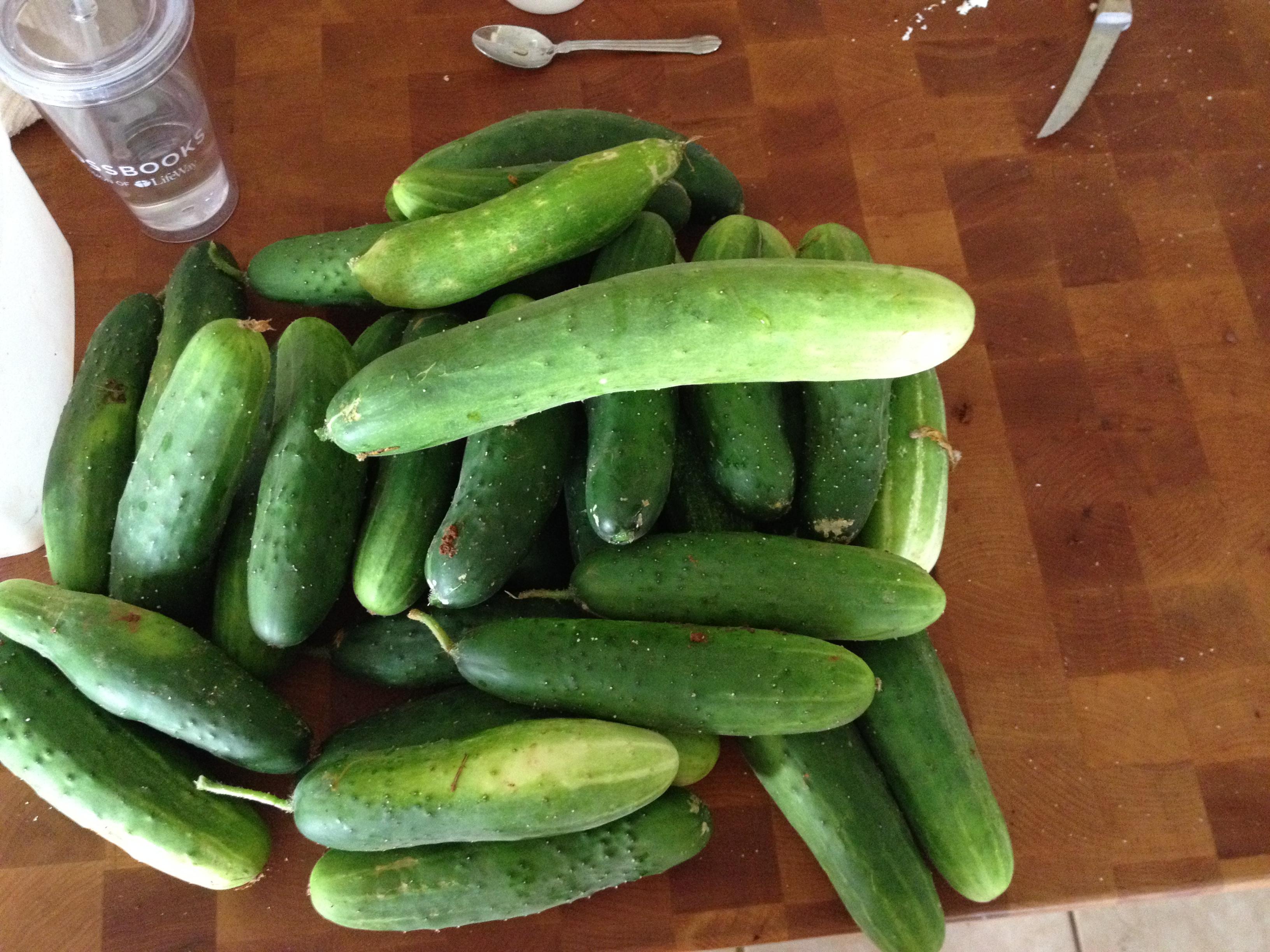 B&B pickles 1