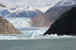 glacier and icebergs