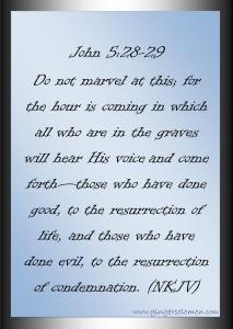 John 5.28-29(2)